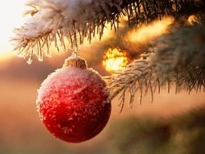 Kerstavond @ De Neutrale Hoek | Wildervank | Groningen | Nederland
